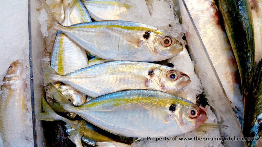 Foodie Local Fish Guide - Ikan Kuning