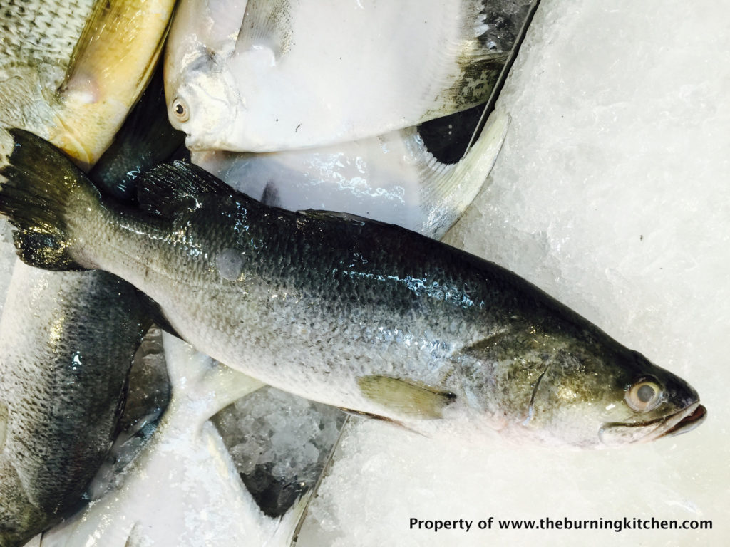 Foodie Local Fish Guide - Seabass