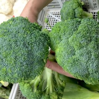 How to choose broccoli