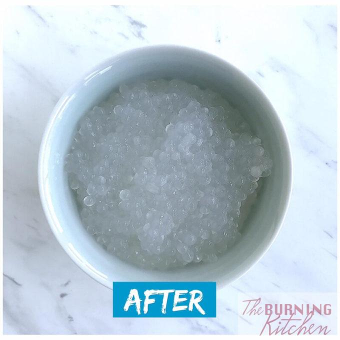 How to Revive Sago - After