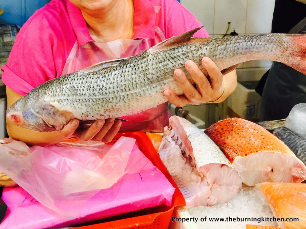 Foodie Local Fish Guide - Threadfin_Ngor_Her